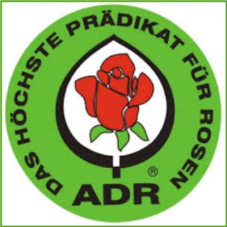 ADR-Rosen